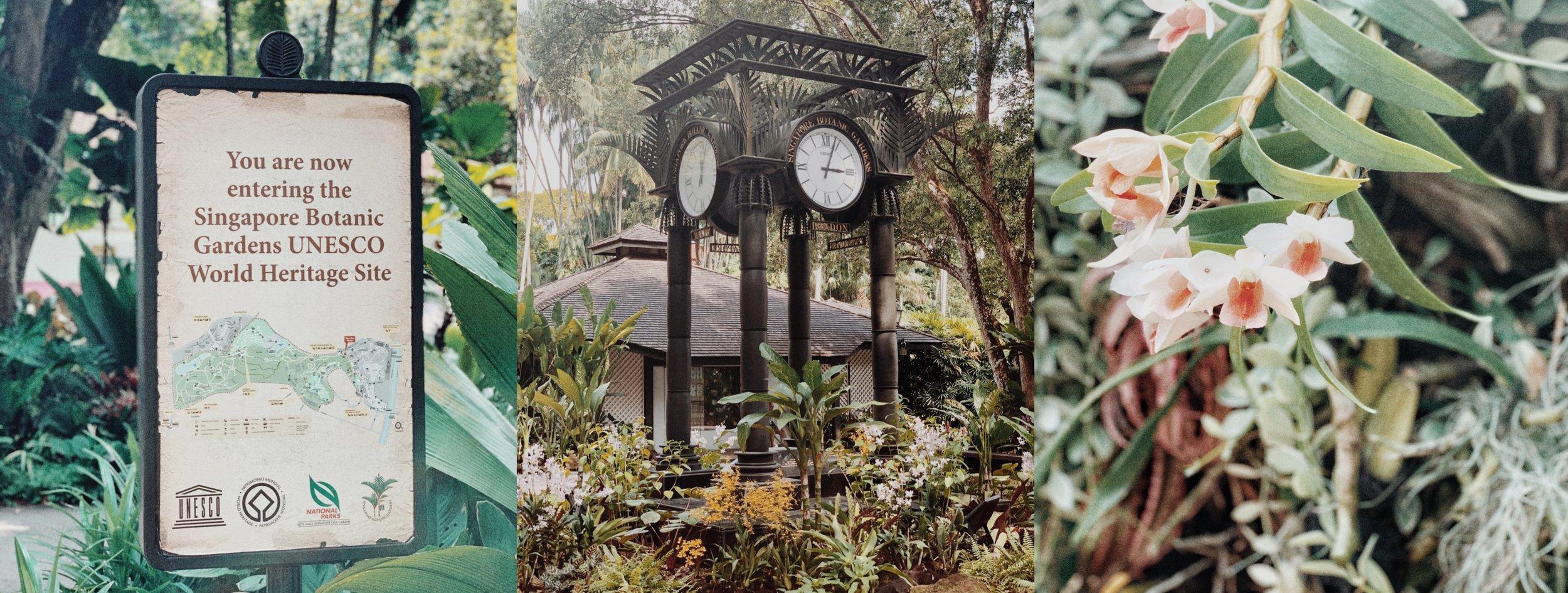 Botanic Gardins, World Heritage Site