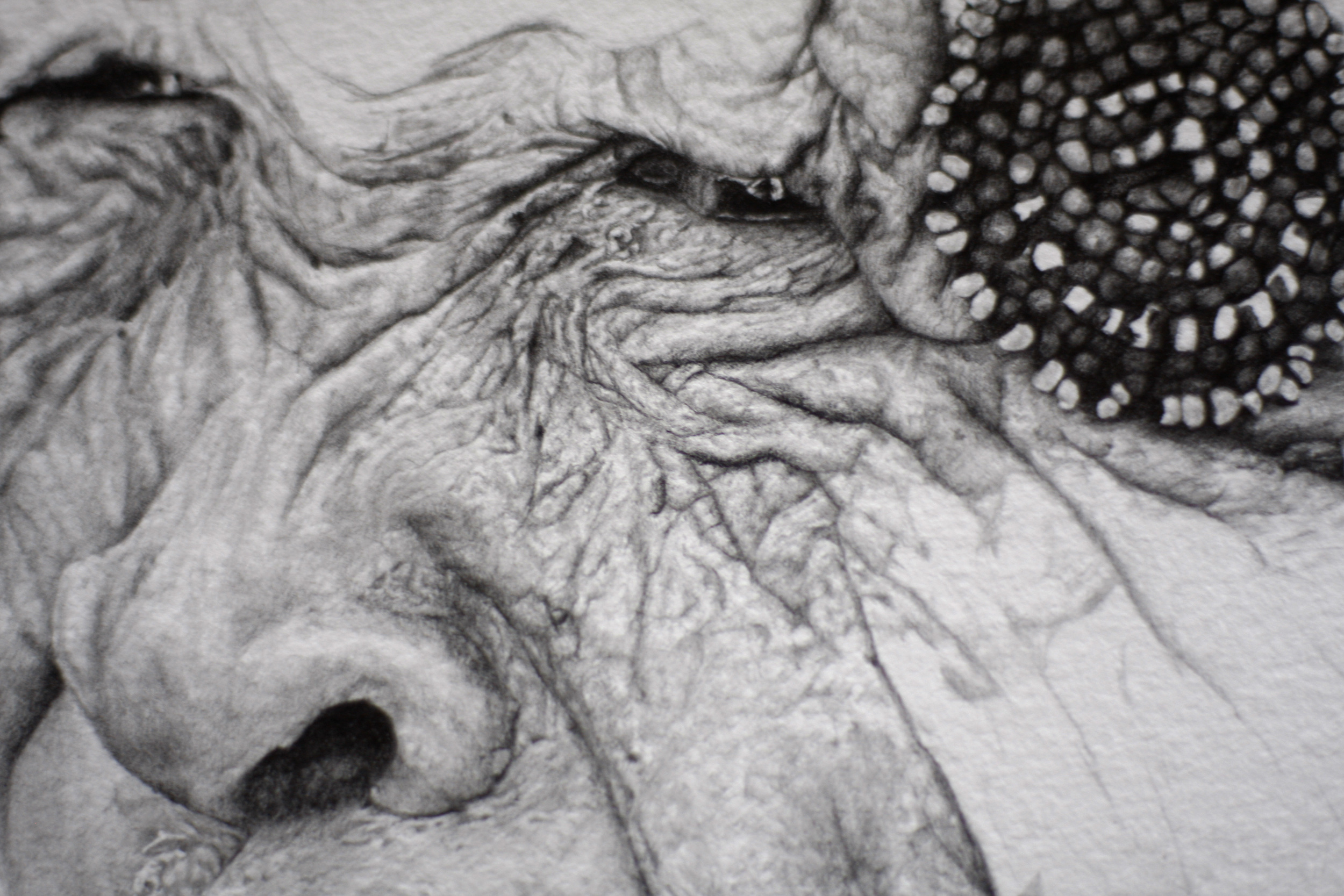 Detail image of the drawing Dignity in progress.