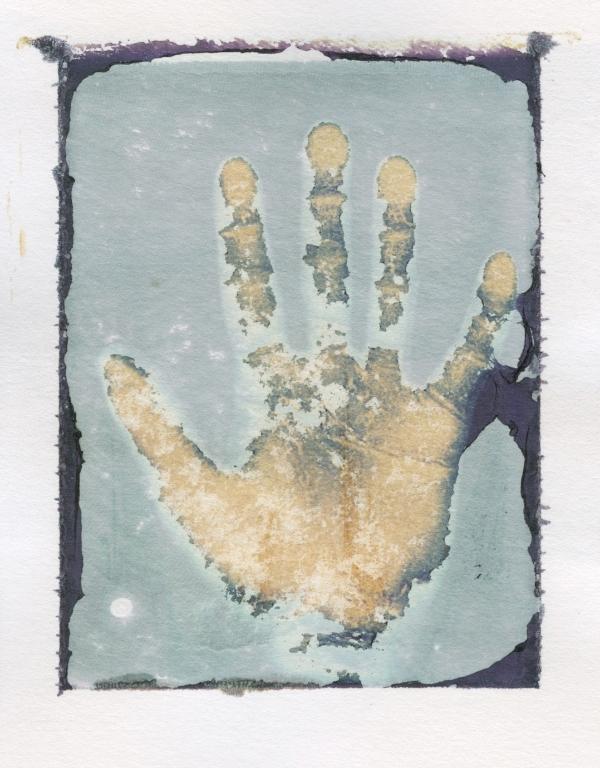 polaroid type 669 image transfer