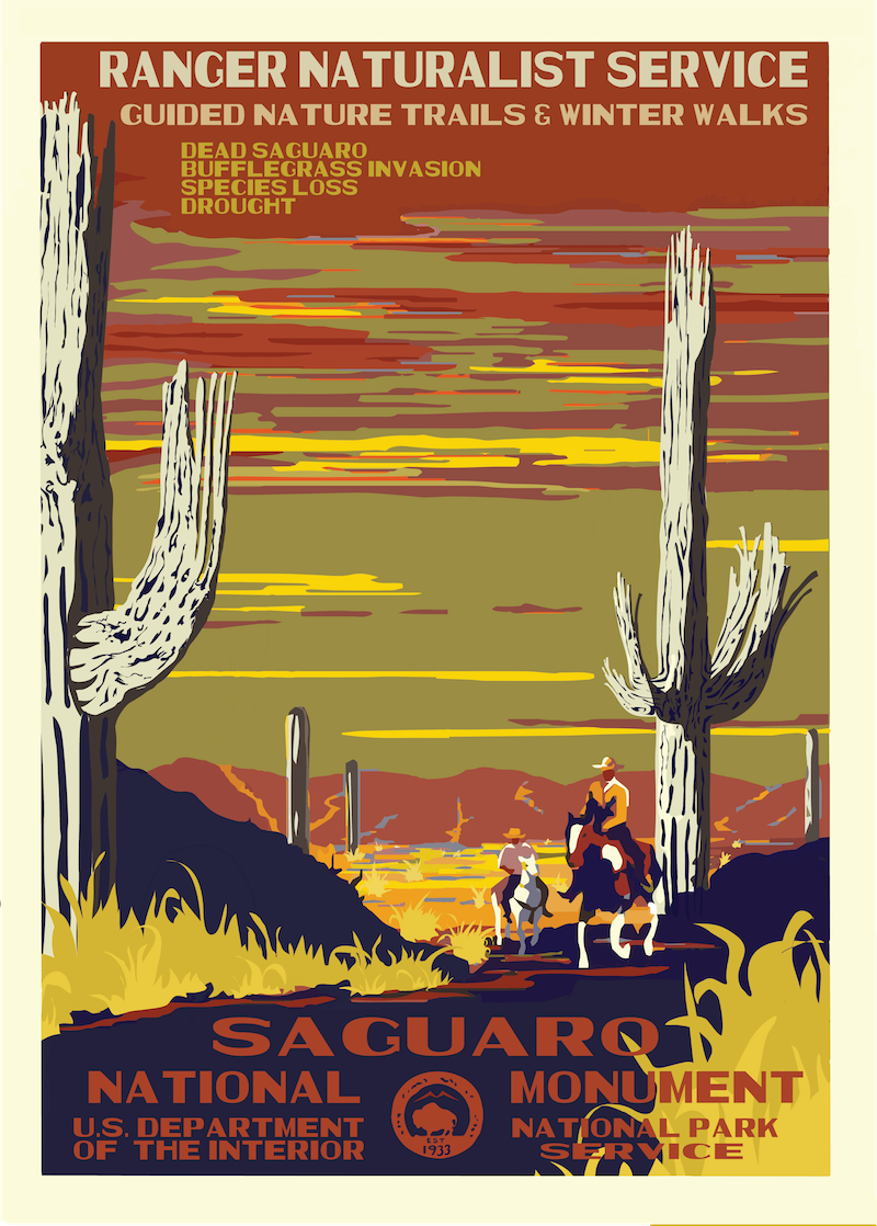 National Parks 2050: Saguaro