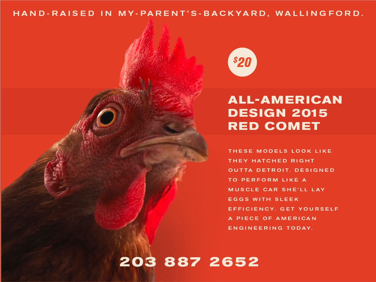chickensforsale!!!-04.png