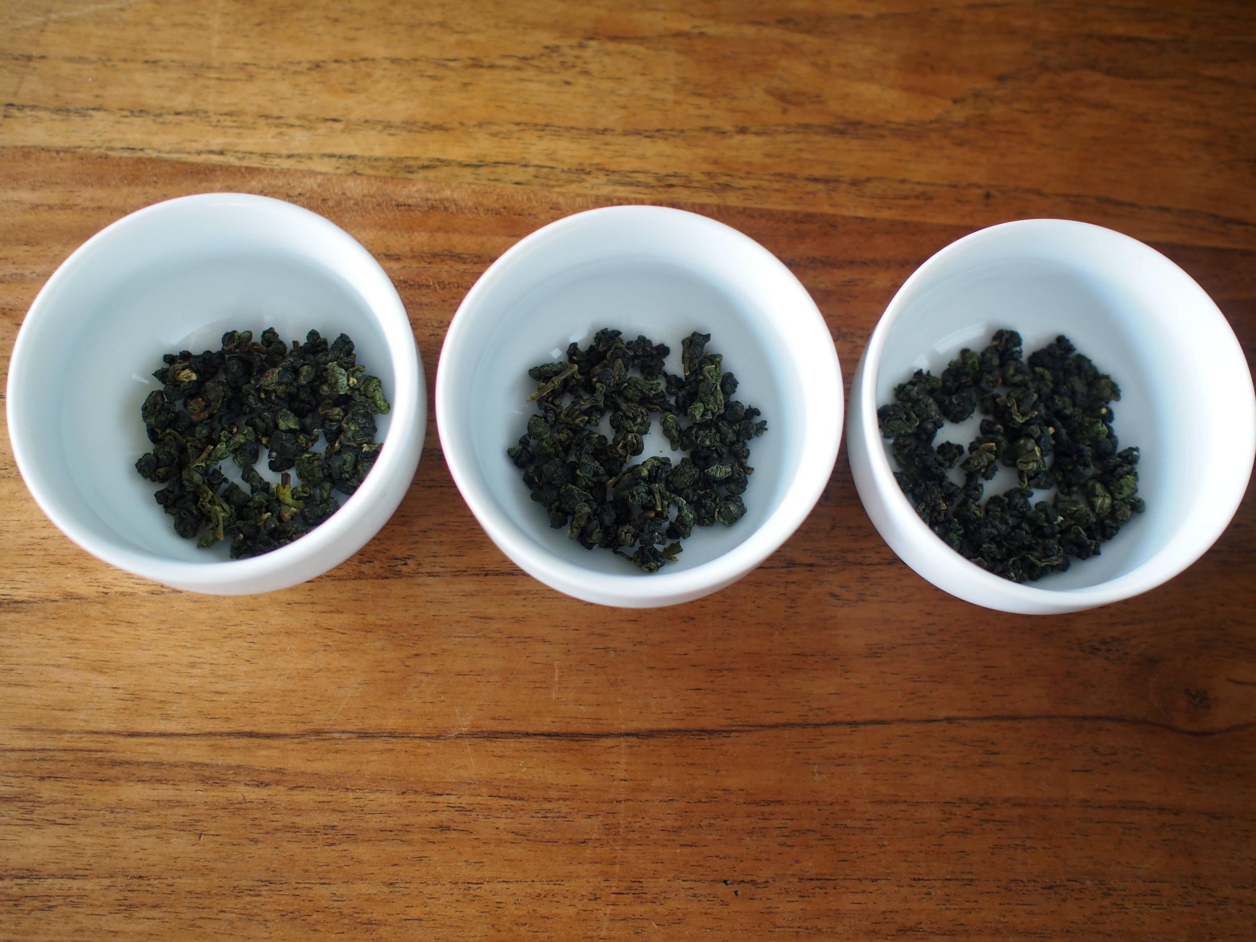 tea-tastings-cup-1