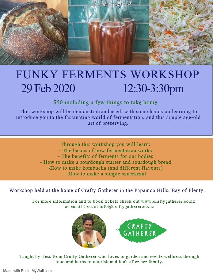 Funky Ferments workshop.png
