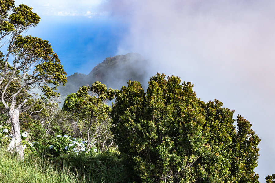 A Peak at Waimea Valley Through the Clouds