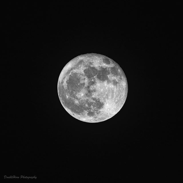 How about that Hunter's Super Moon last night?  Pretty amazing stuff! #huntersmoon #supermoon #supermoon2016 #moon #fullmoon #photography #nikon #d800 #astronomy #astrophotography #space