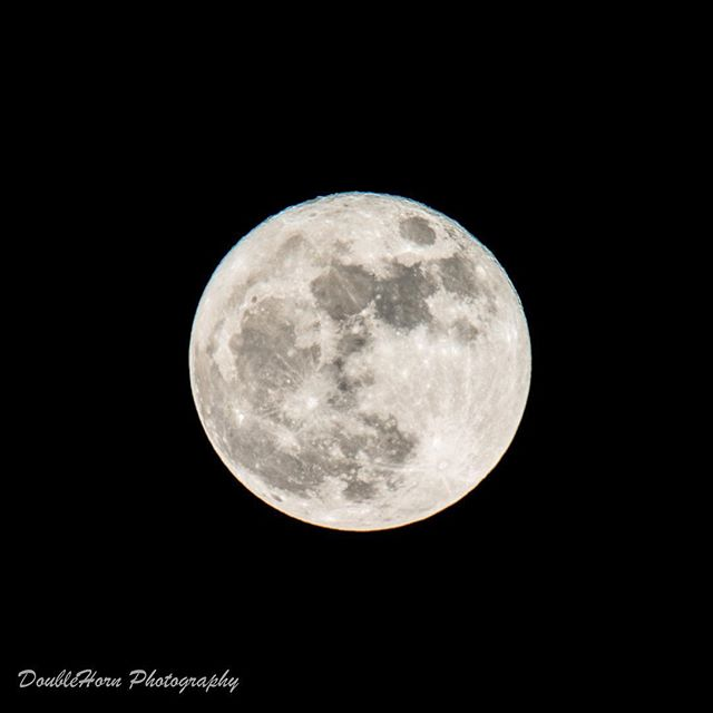 If you're a photographer on Instagram you gotta have one!#obligatorysupermoonphoto #supermoon2016 #supermoon #space #perigee #photography #astrophotography #astronomy #moon #fullmoon #d800 #nikon