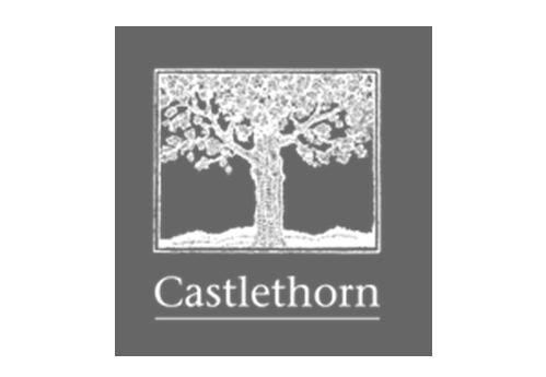 castlethorn jpg.JPG