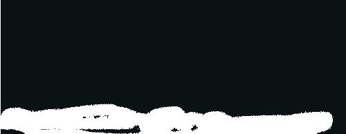 celsius_logo_black_RGB_utan_ready.png