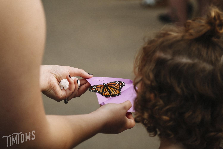 Butterfly Sendoff at Wedding