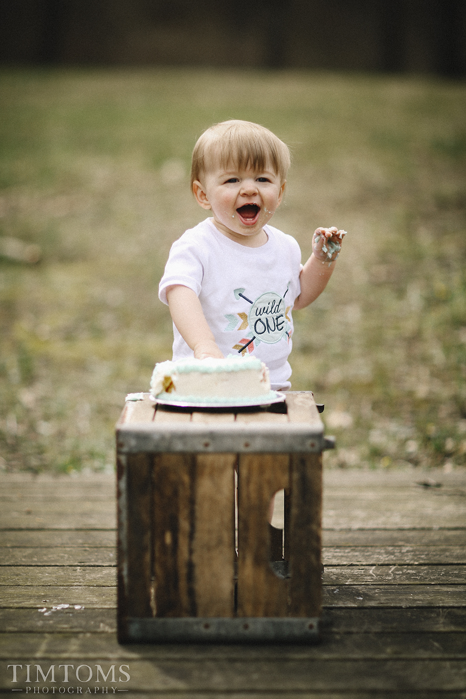 Wild One Year Old Smash Cake