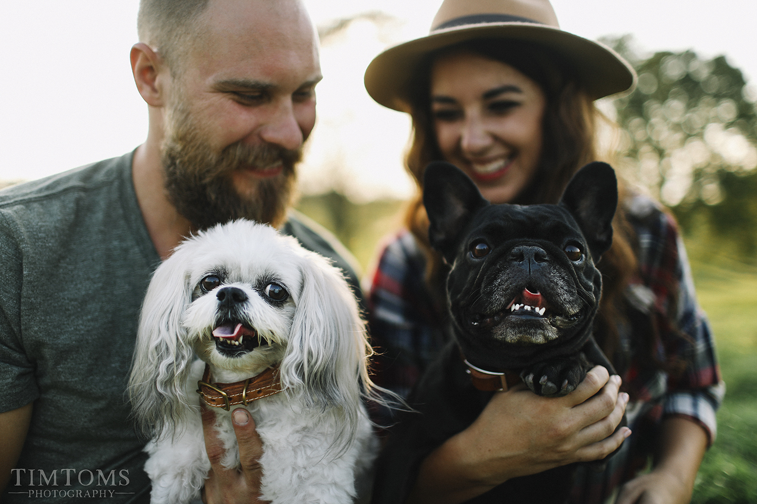 Engagement photography with puppies dogs