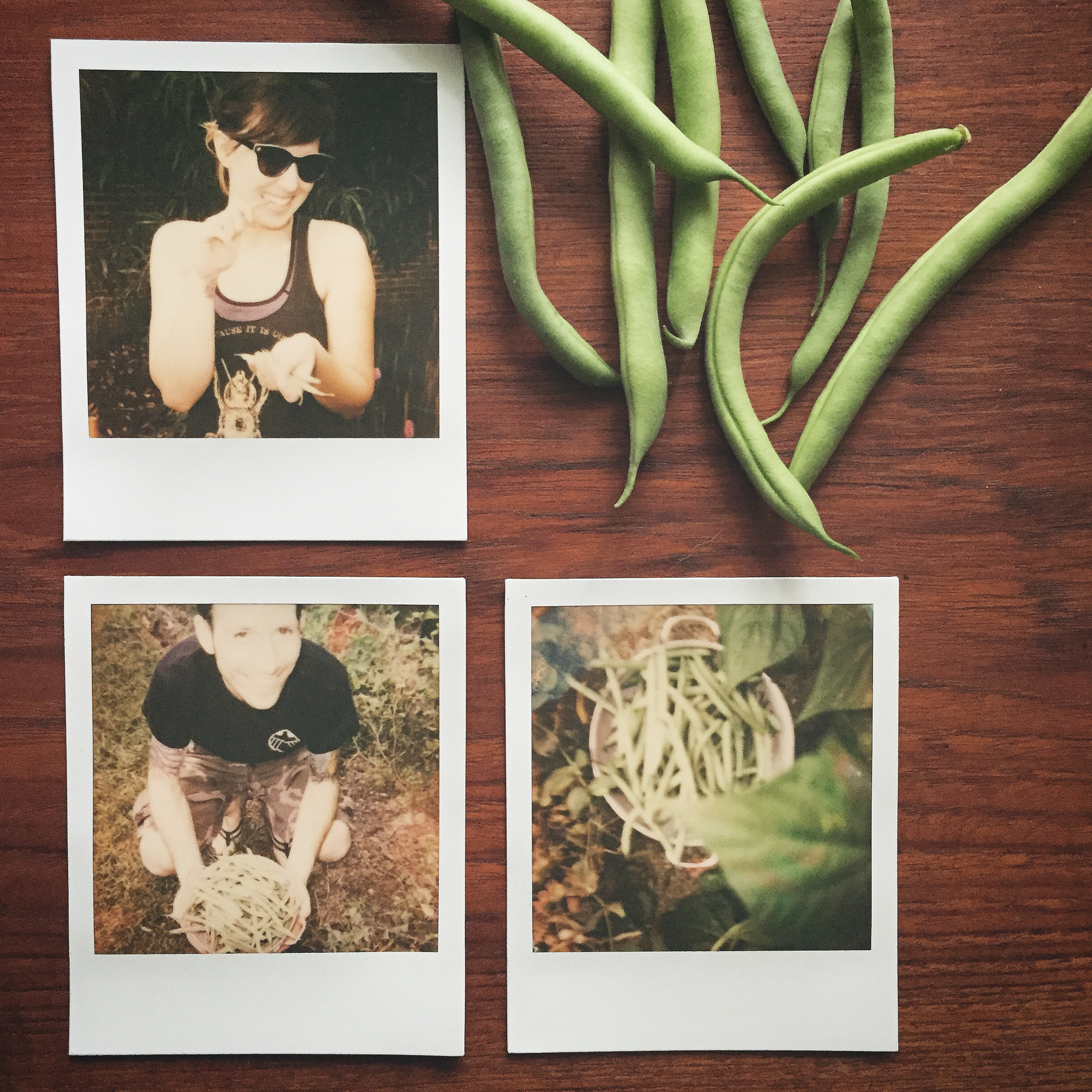 Impossible Project film on the S+S instagram