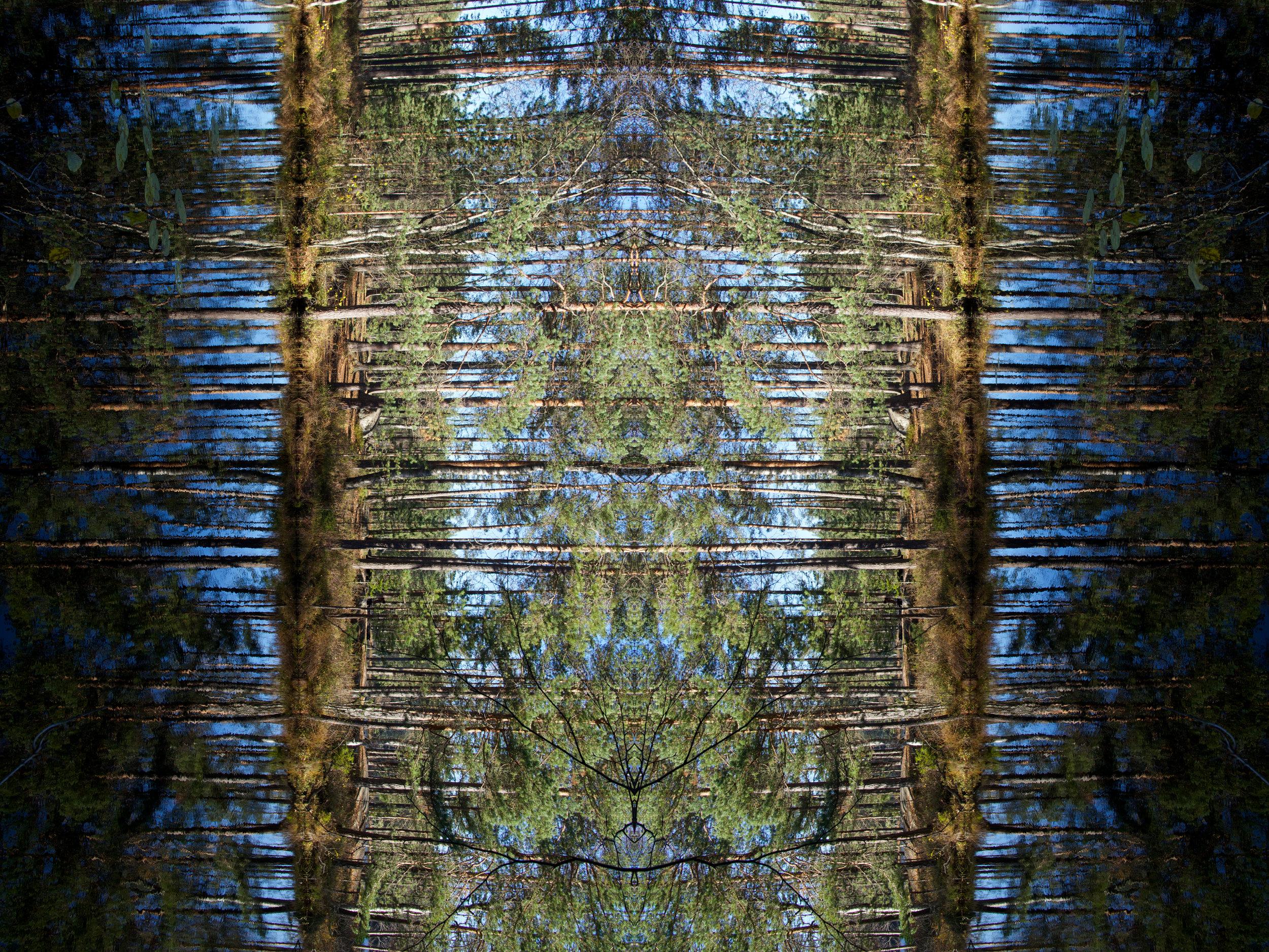 Mirror_Finland_Nuuksio_PeiliX.jpg