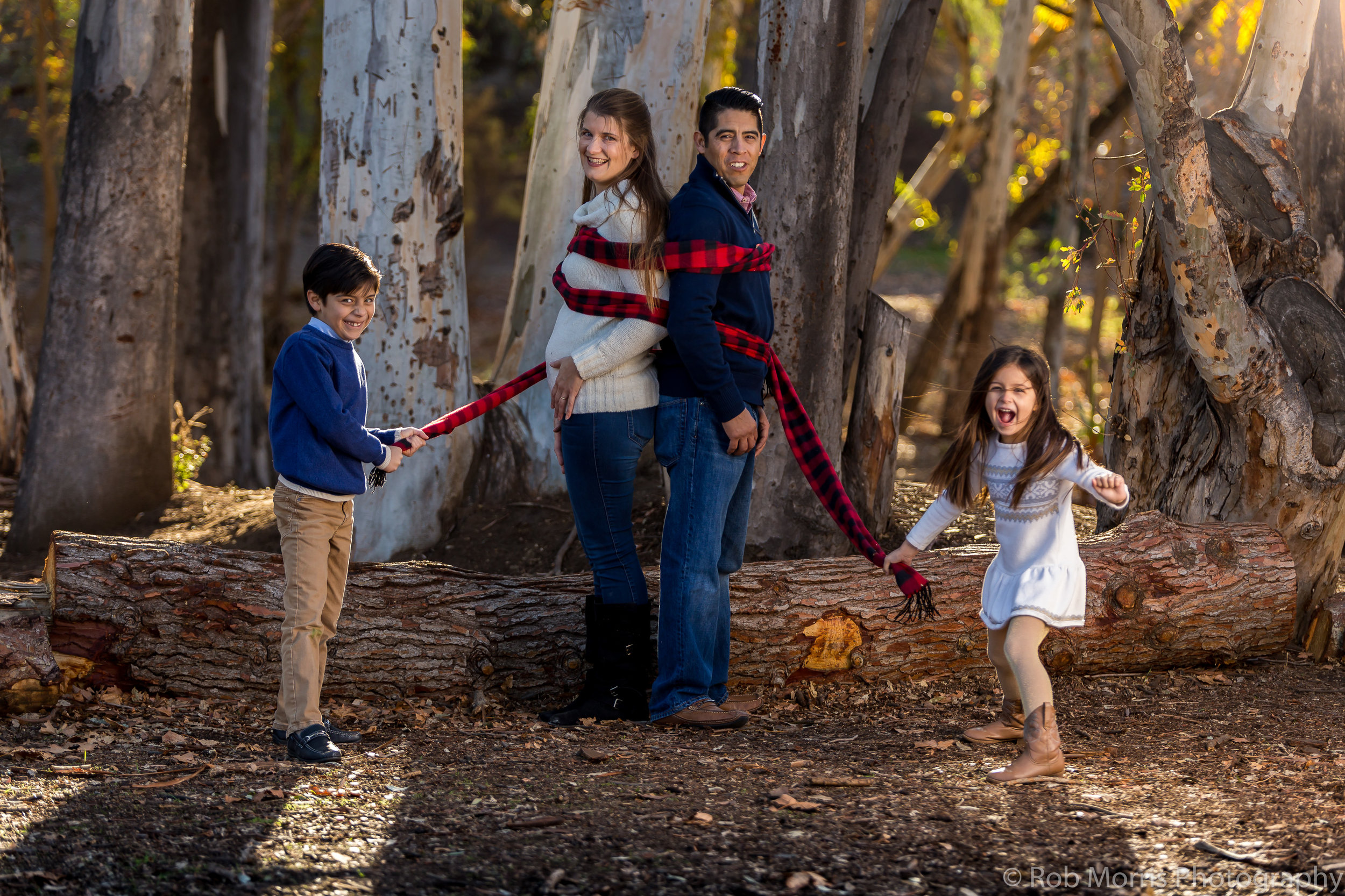 Click here to see our family portrait work, and find out how to have us take pictures of your amazing family!