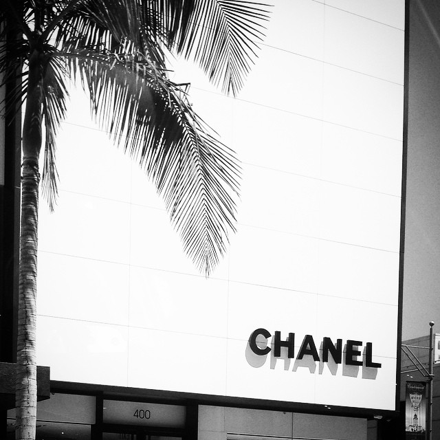 #chanel #beverlyhills #palm #black&white #mbdoescali
