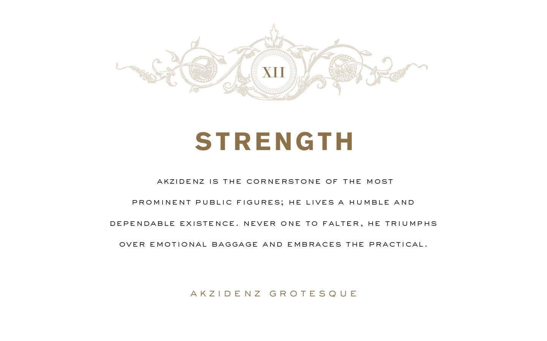 12_Copy_Strength.jpg