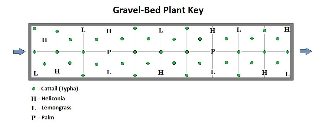 Plants_Key.png