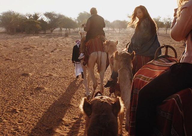 Dusty bottoms riding club 🐪🐪🐪 📷@matt_conant #luckyday #dustybottoms #desert #threeamigos #camel #trek #dubai #production #ltwoproductions