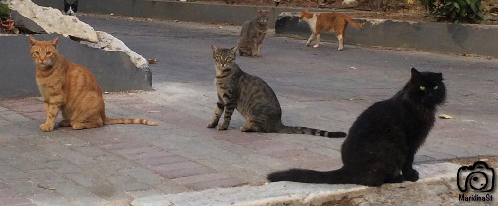 Athens, Greece 2015