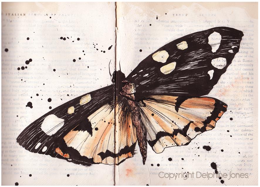 Scarlett Tiger moth
