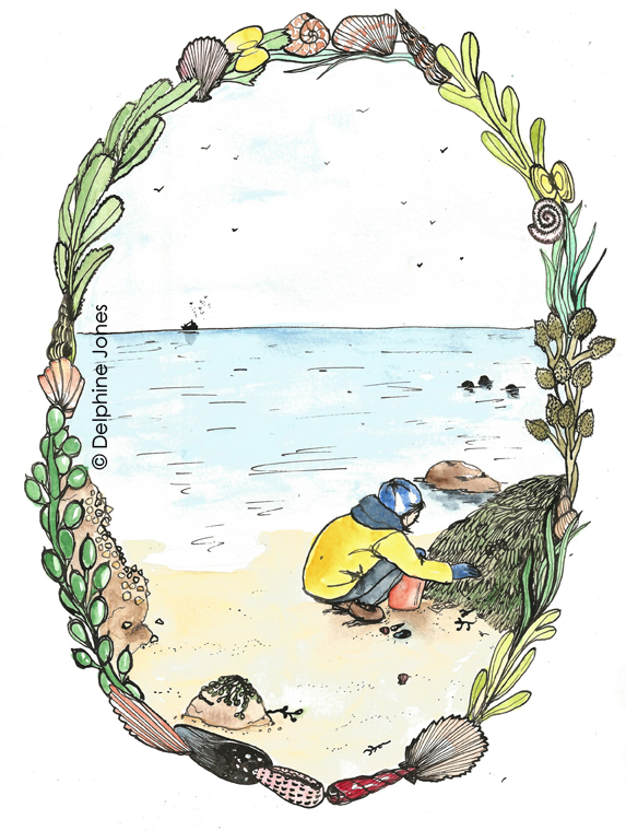 Eliza's Book of Whimsy - 'The Seashore'