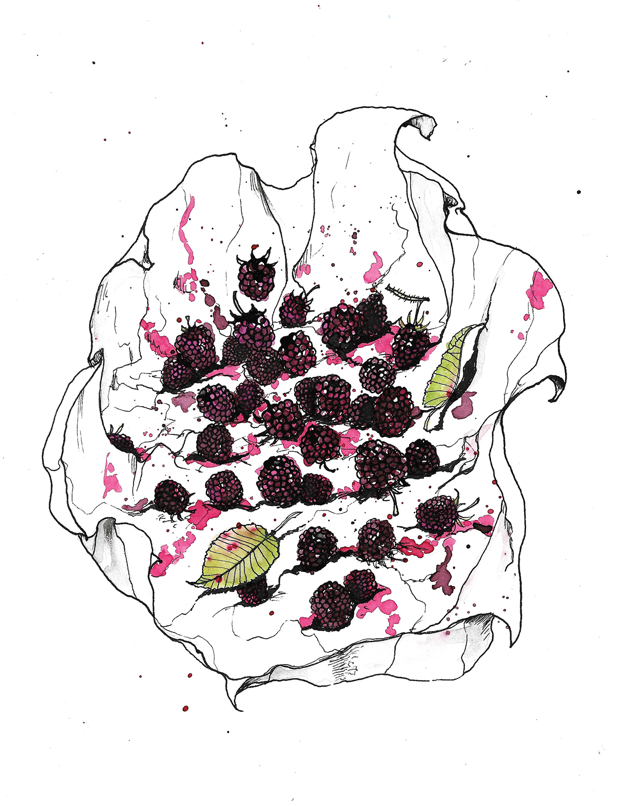 blackberries web.jpg