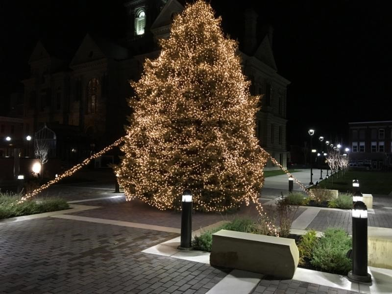 City of Findlay's Christmas Tree - December 2017