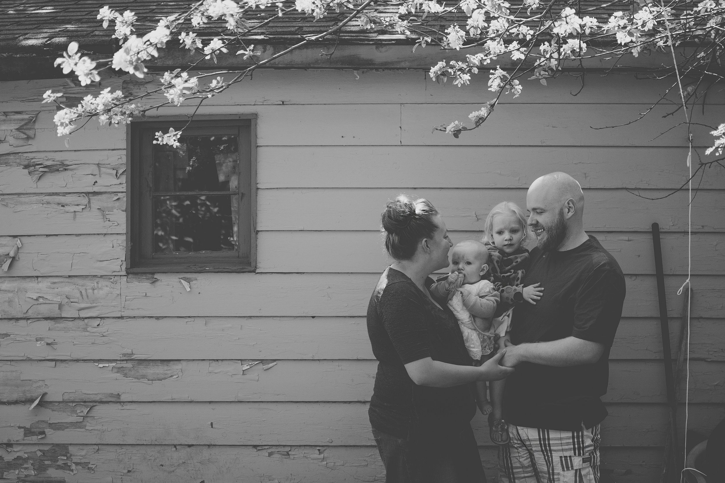 Family Photography in MN