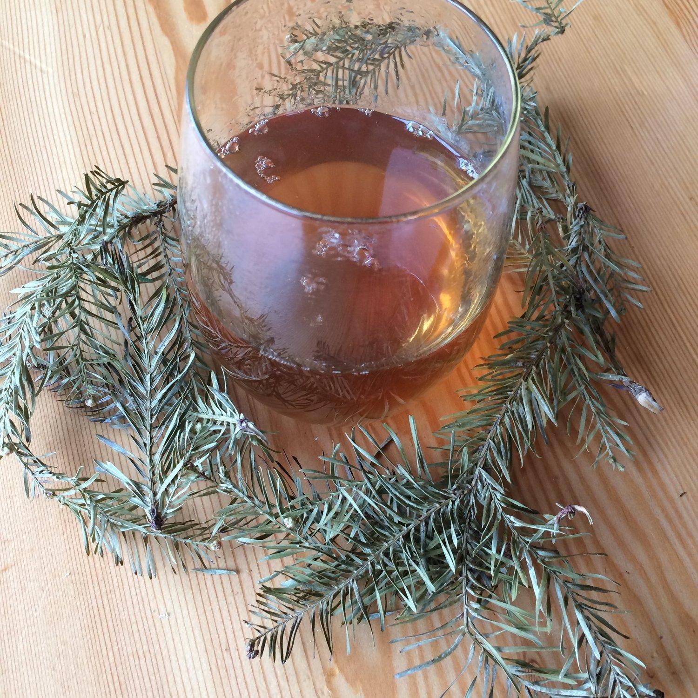 redwood tea.JPG