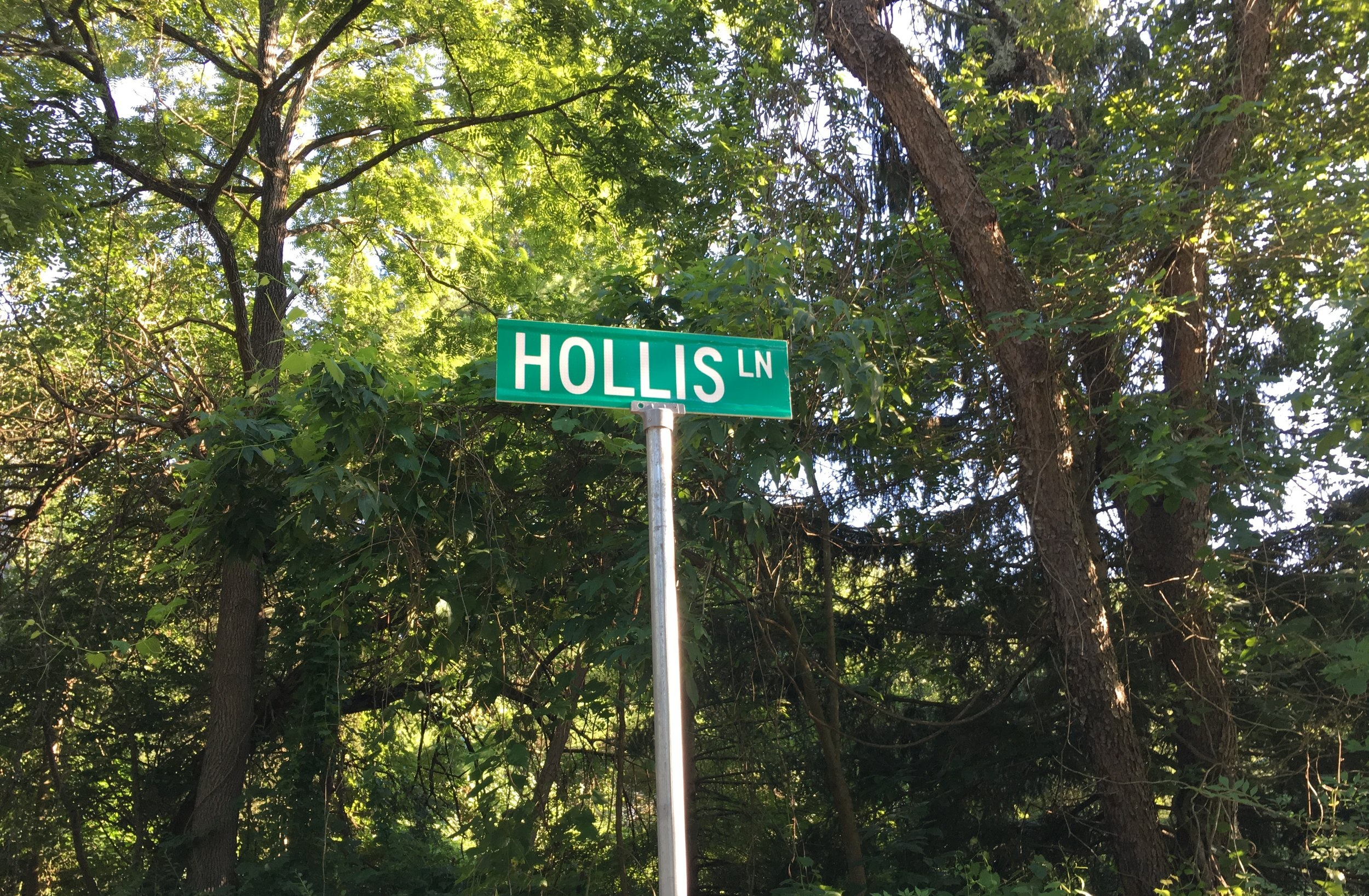 hollis+sign.jpg
