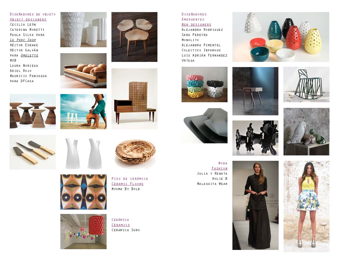 Pages-from-Arte-Careyes-Curaduria-20131.jpg