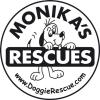 Monika's Doggie Rescue  -  doggierescue.com.au
