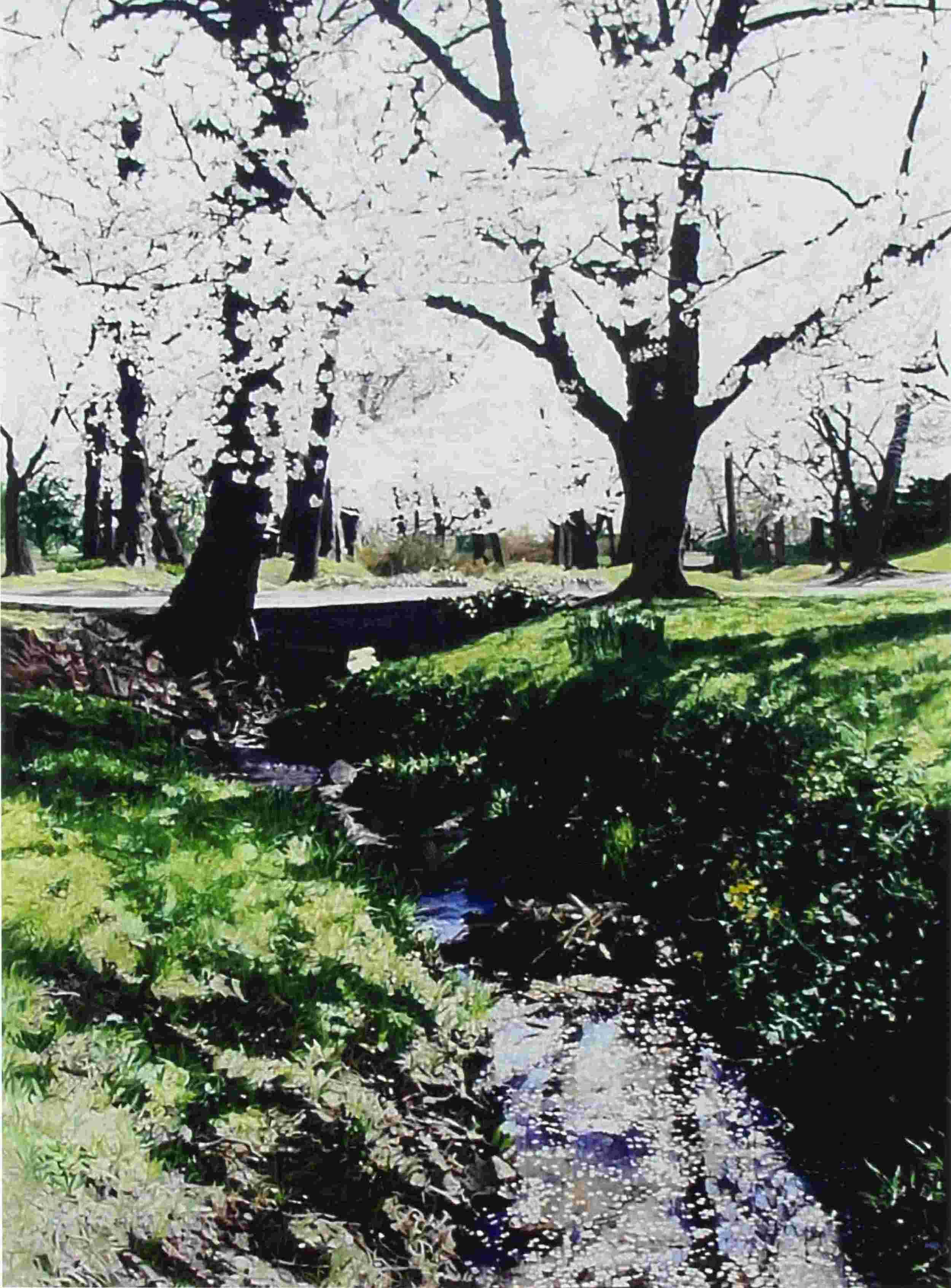 Petal Creek, 6'x4', oil on canvas