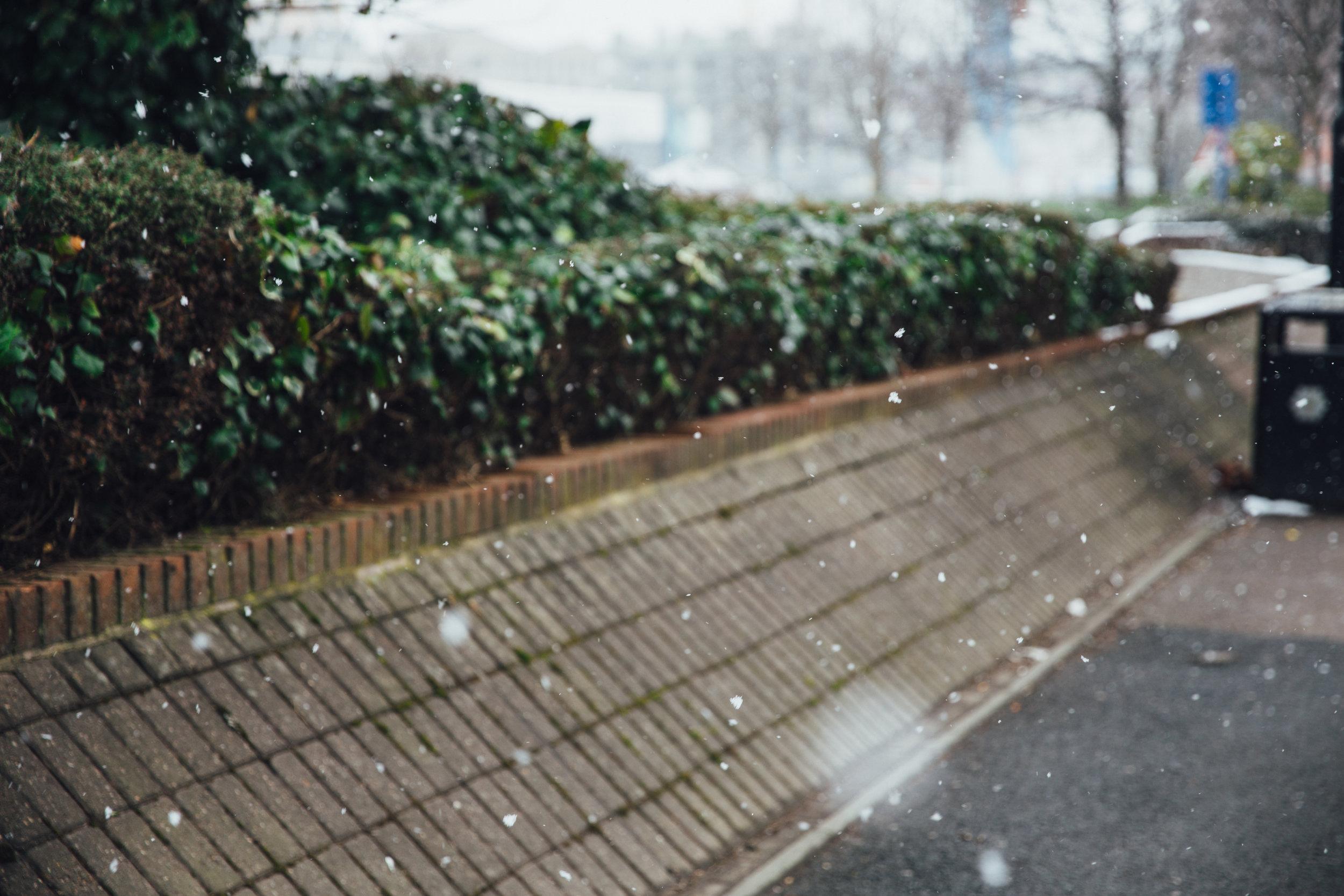 UK-5353.jpg