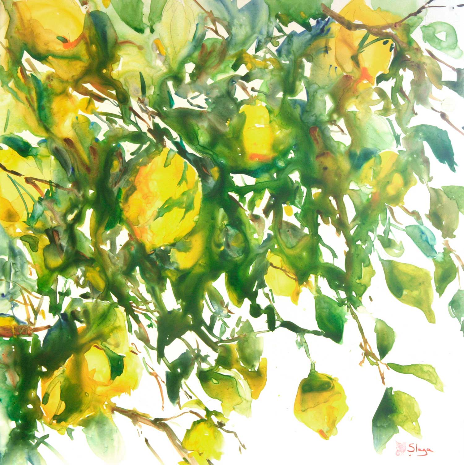 THROUGH-THE-LEMON-TREE.jpg