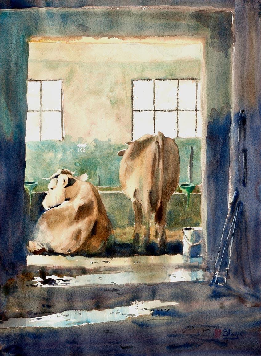 RESTING-COWS.jpg