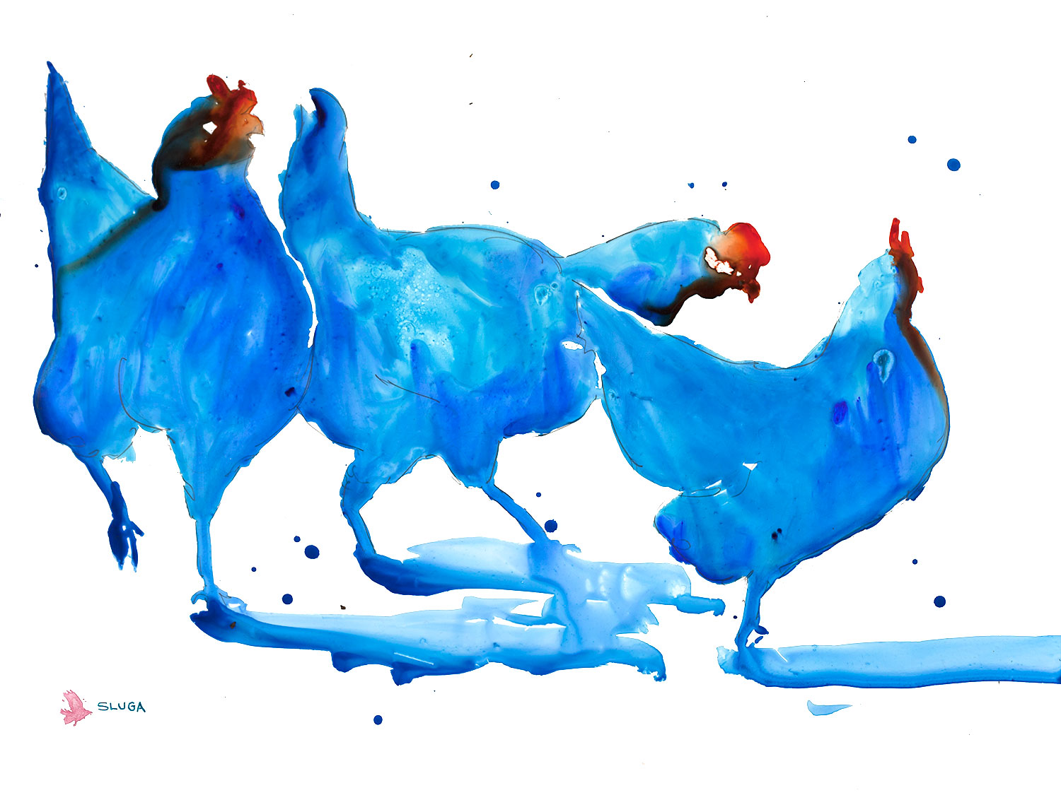 blue-chooks.jpg