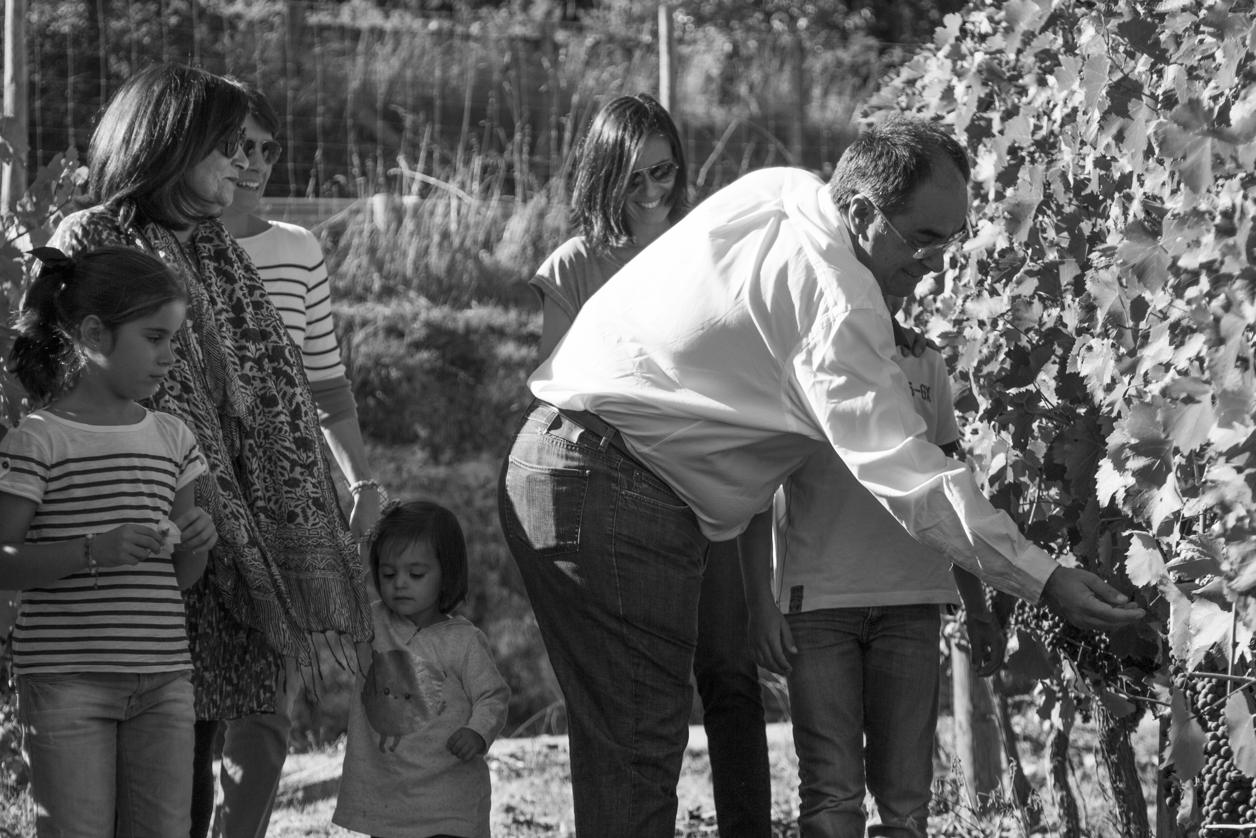 The Vázquez family in the vineyard