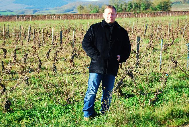 Philippe in vineyard.jpg