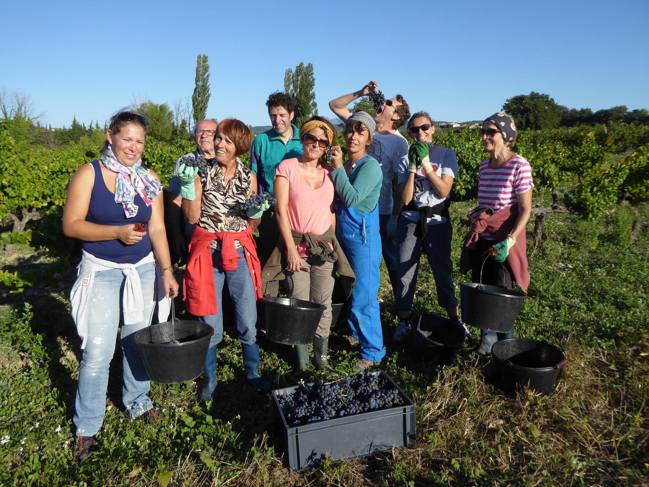 Harvest is a community effort