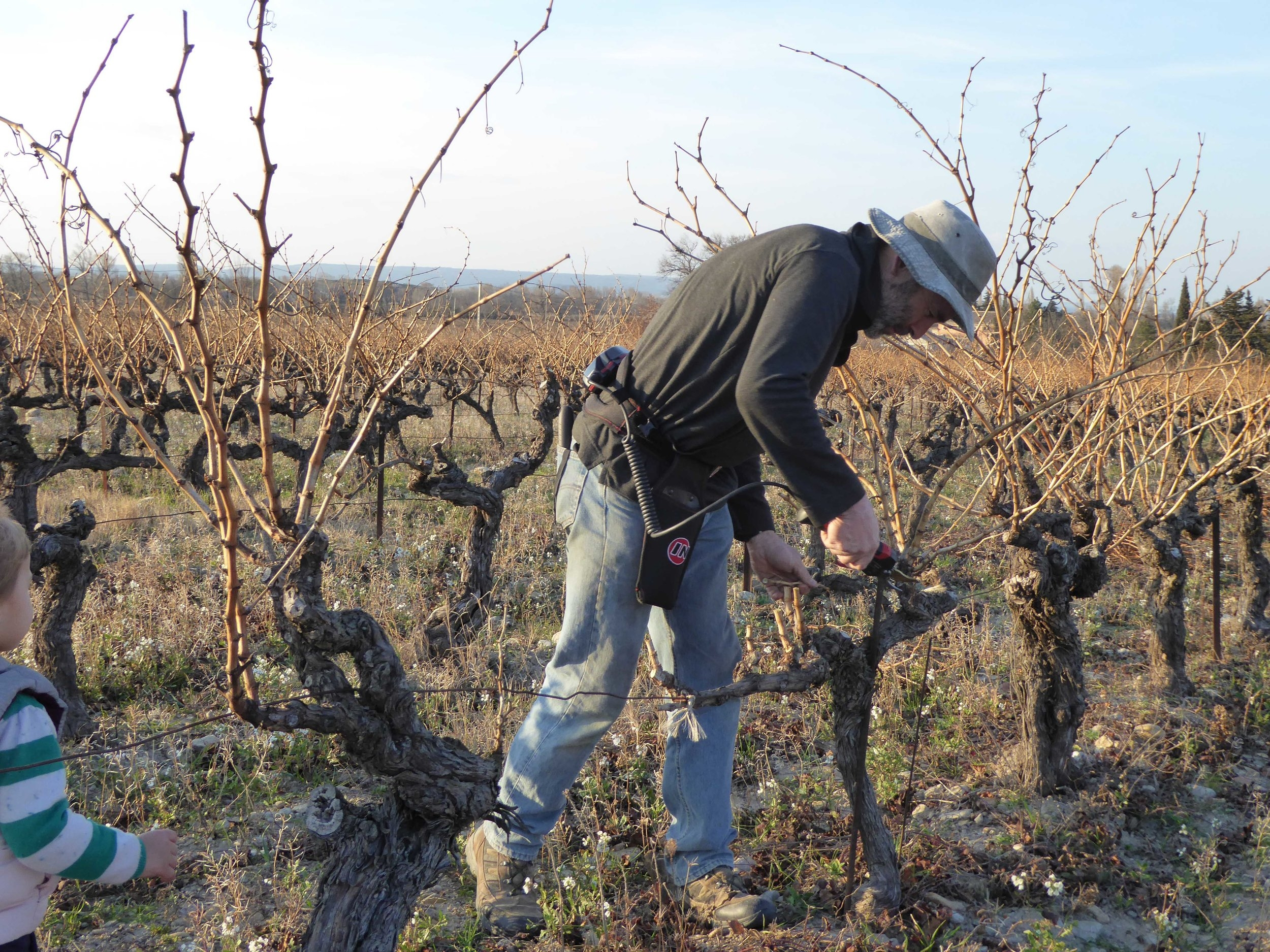 Pruning by hand