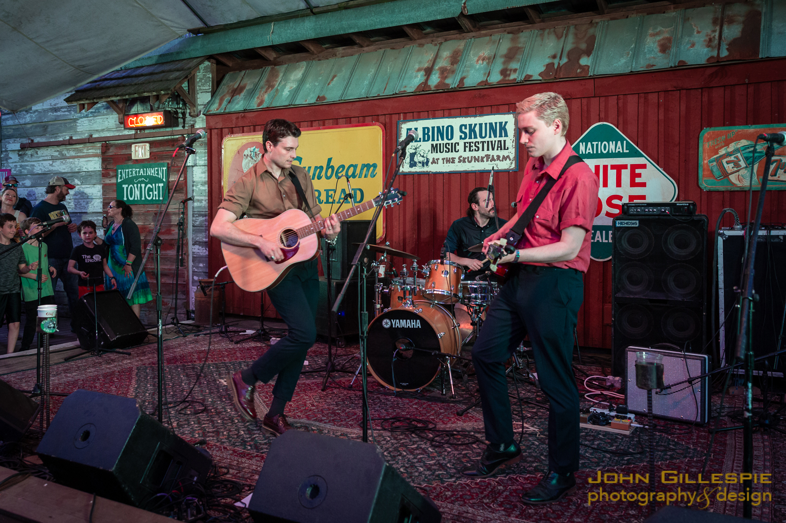 The Ruen Brothers perform at the Albino Skunk Music Festival. Photo: John Gillespie