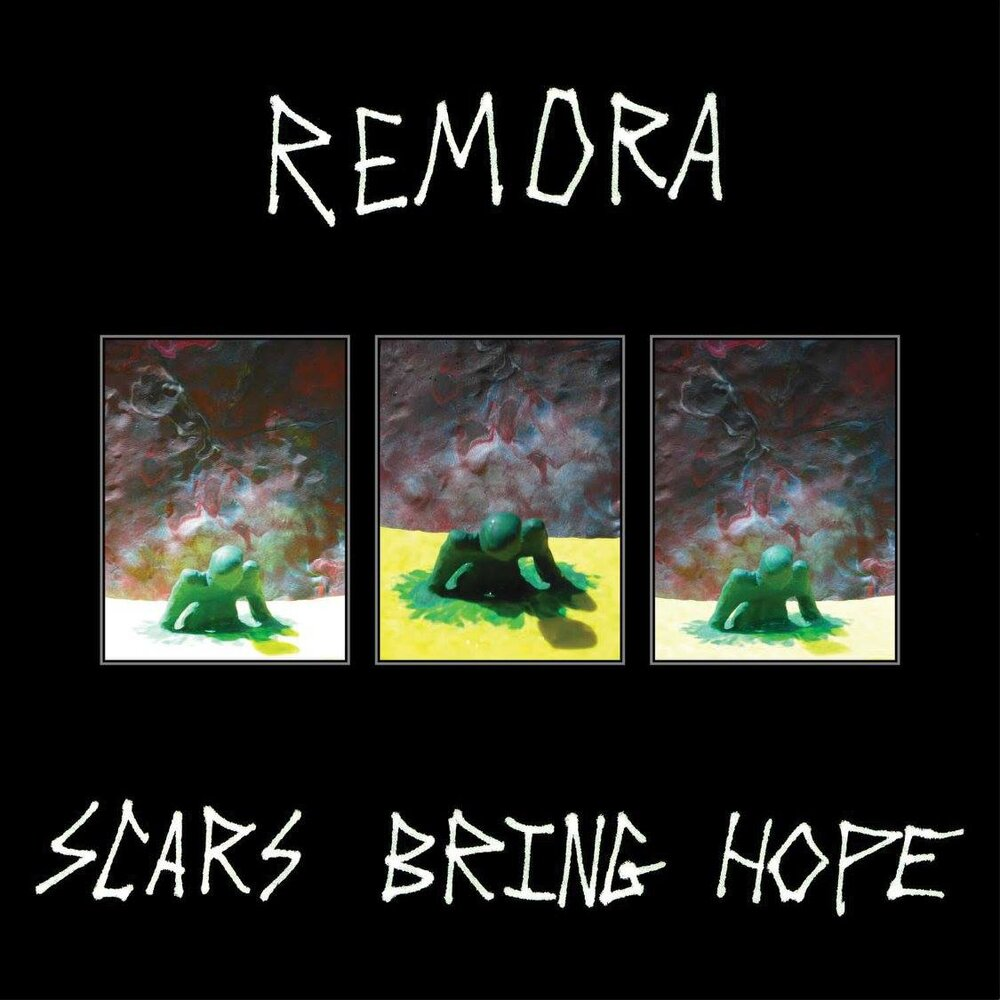 album cover for Remora's 2011 release  Scars Bring Hope