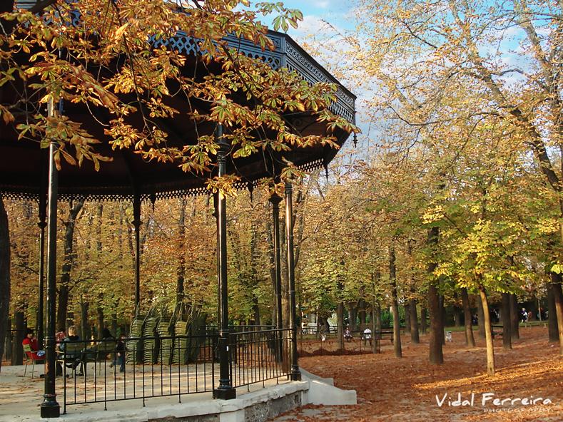 Autumn - Paris, France