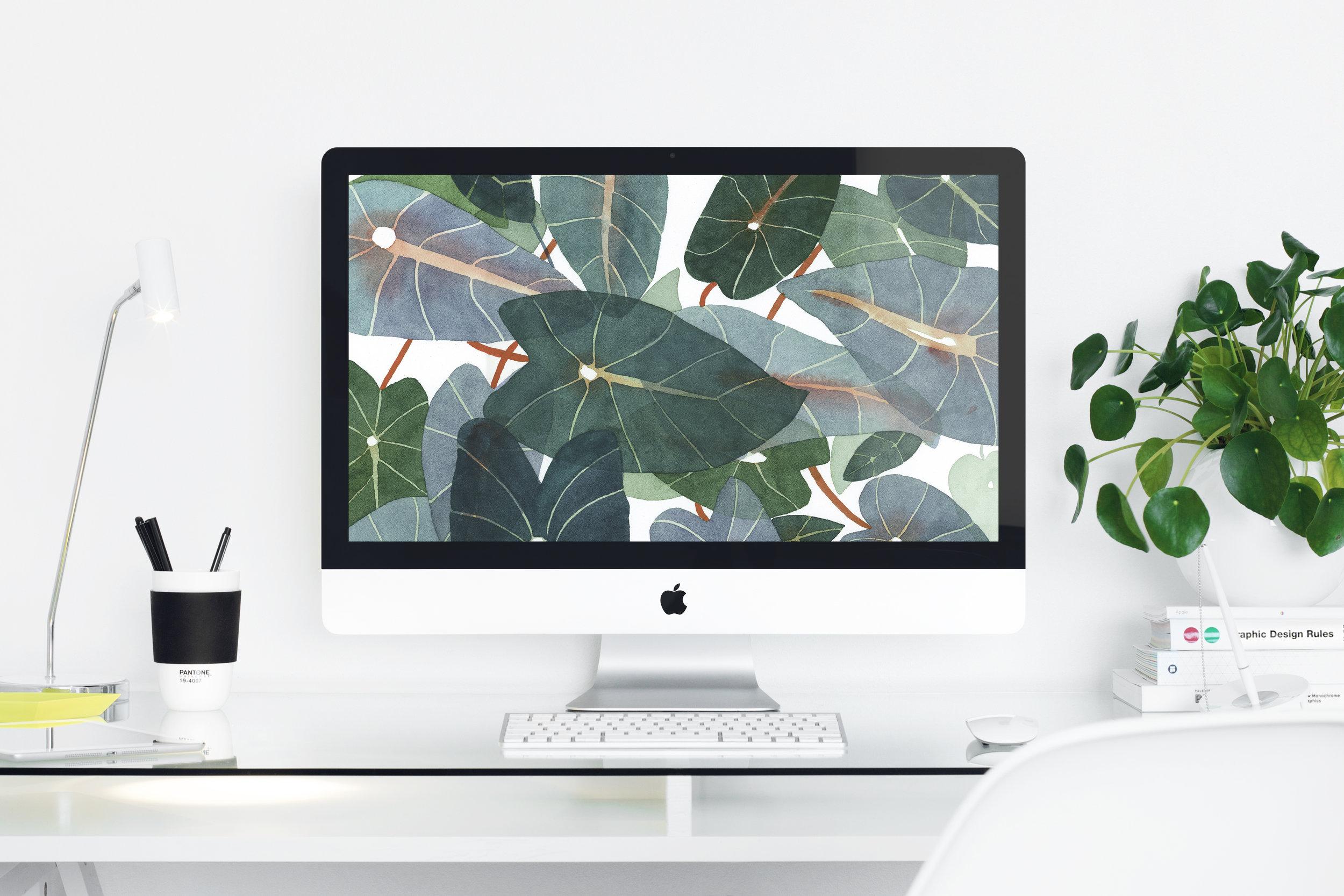 Wallpaper_Caladiums_Web2.jpg