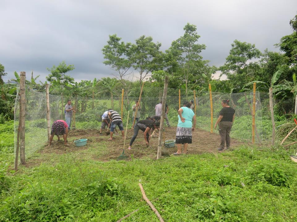 Community members come together to prepare land for an organic garden as part of their second organic agriculture workshop.