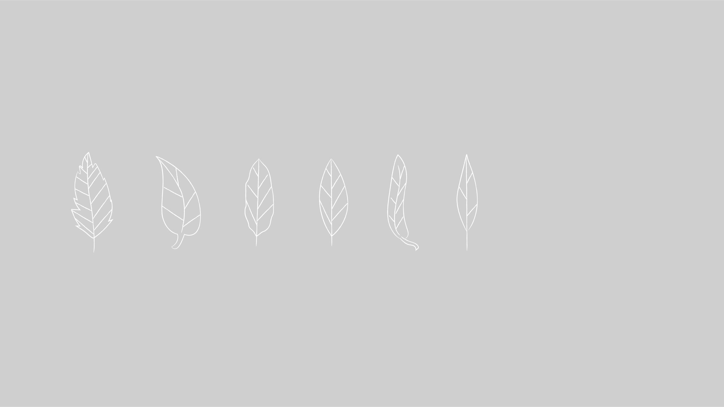 BIEN-190109_ETHOS_cv_v07_-01.png