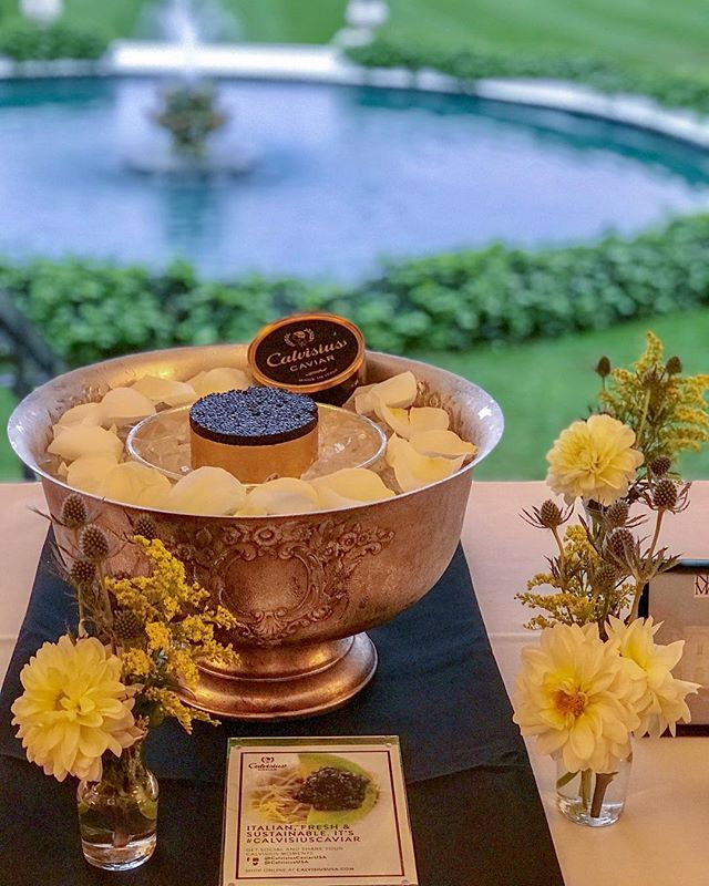 Our @marcjsievers was making magic with @calvisiuscaviarusa and @cadelbosco_usa at the Newport Mansions Wine & Food Festival. #RosecliffMansion