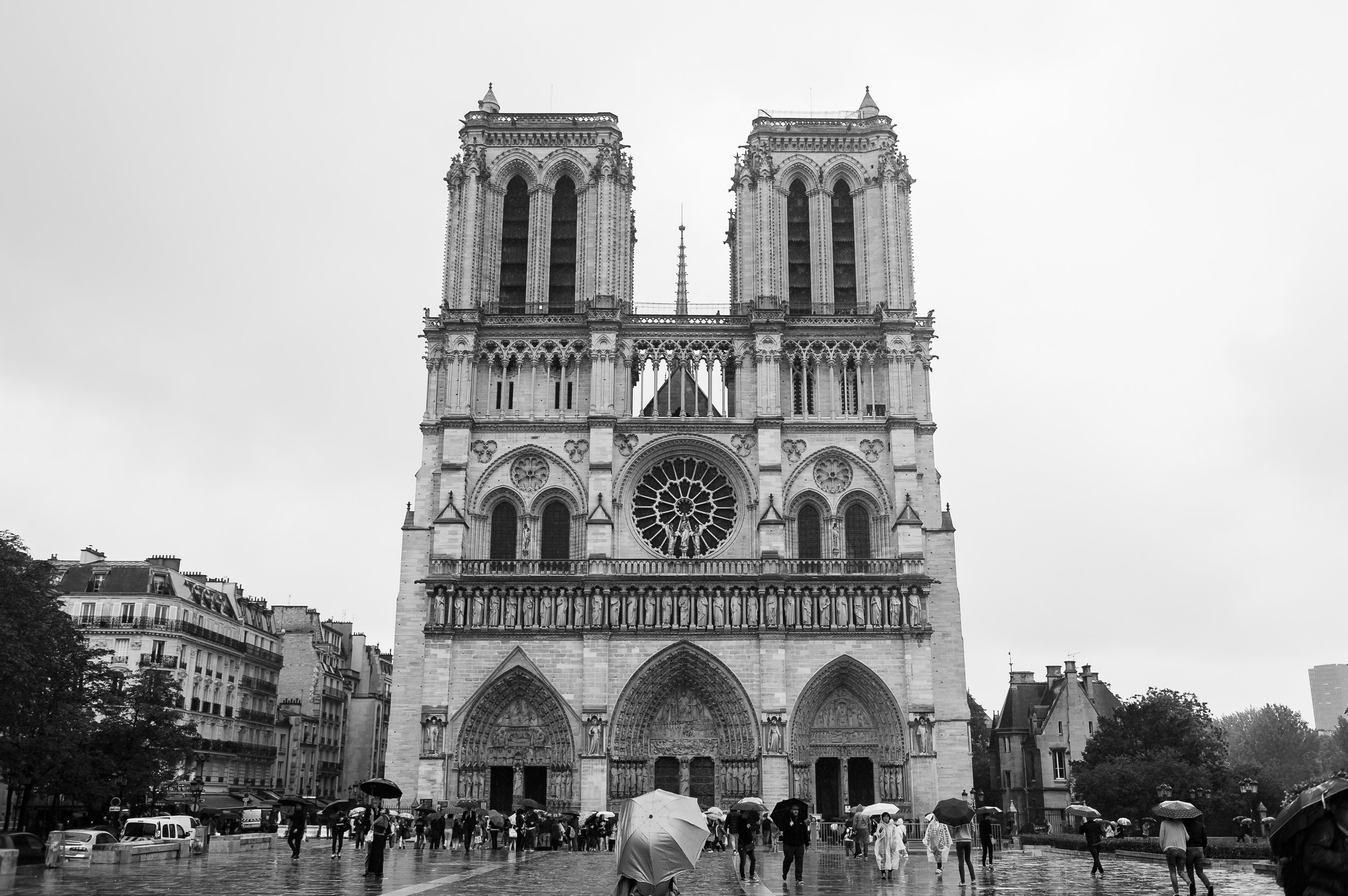 Notre Dame // 2015