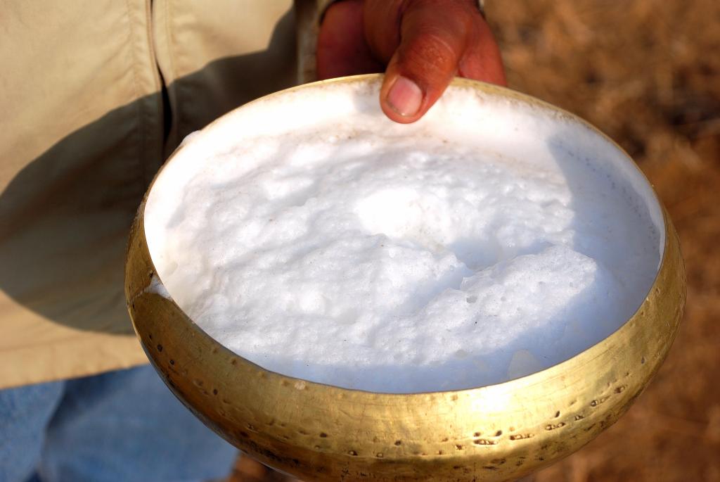 camel milk.JPG